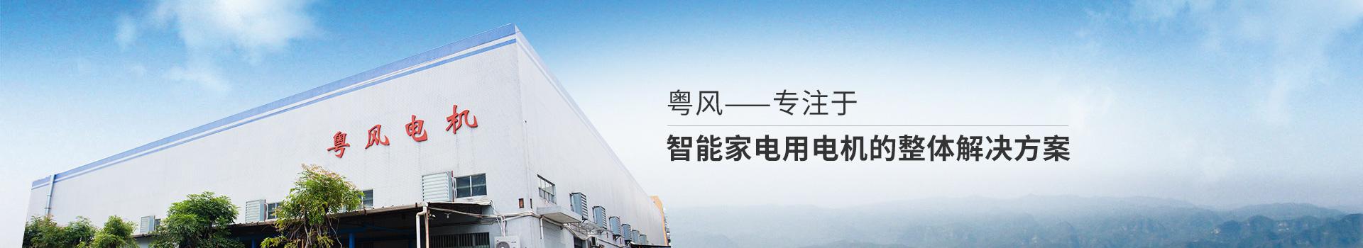 粤风电机-专注于智能家电用电机的整体解决方案